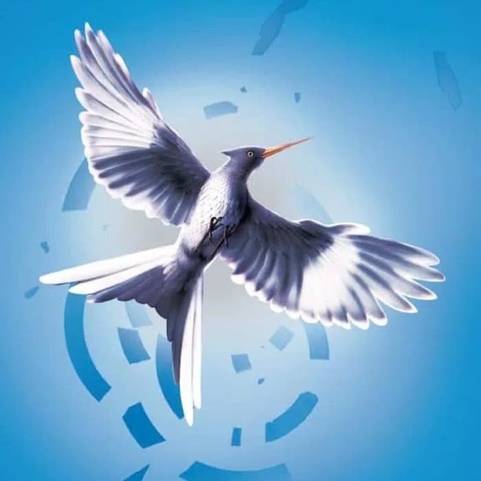 Ebook Mockingjay Bahasa Indonesia