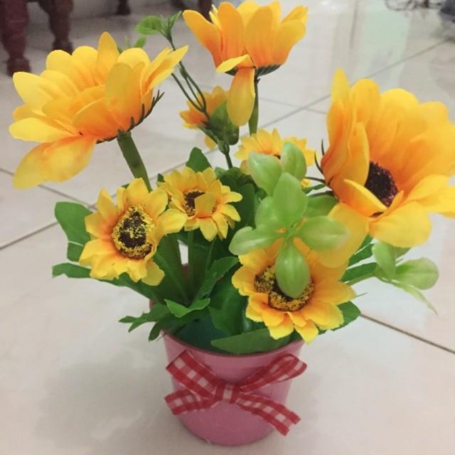 Unduh 760+ Gambar Bunga Matahari Beserta Potnya Gratis Terbaru
