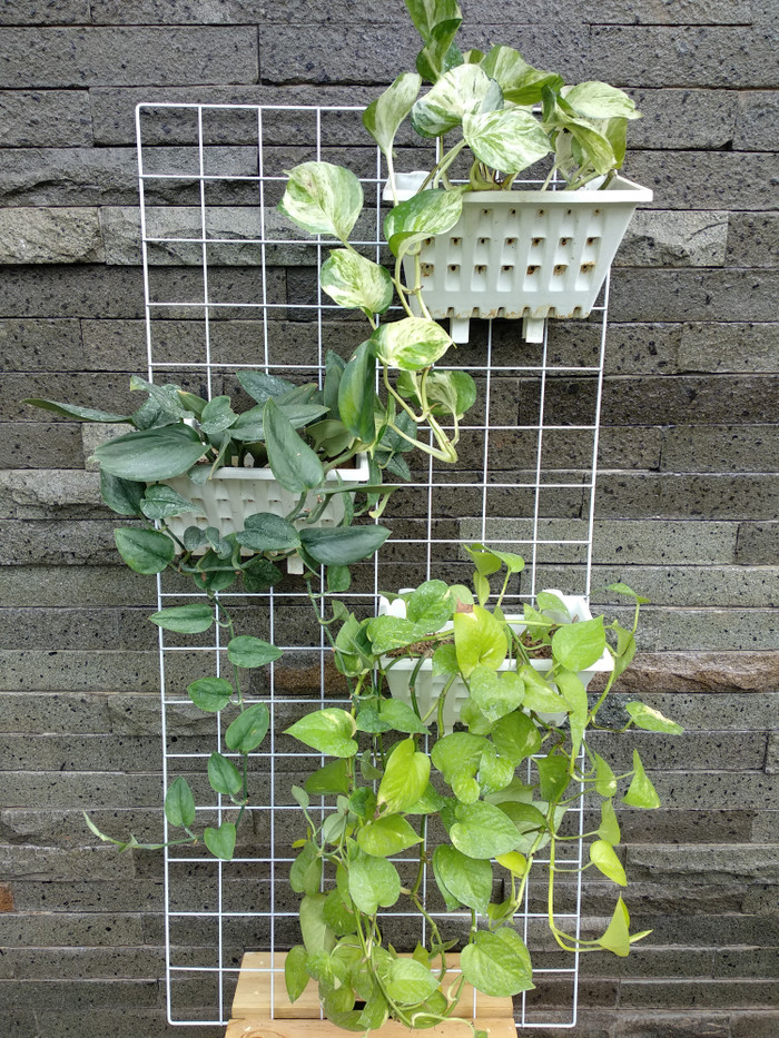 Desain Taman Bunga Gantung  jual rak kawat rak aksesoris serbaguna rak gantung tanaman jakarta timur pot kecil tokopedia