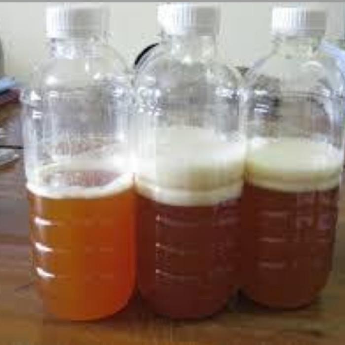 85 Gambar Air Gula Paling Hist