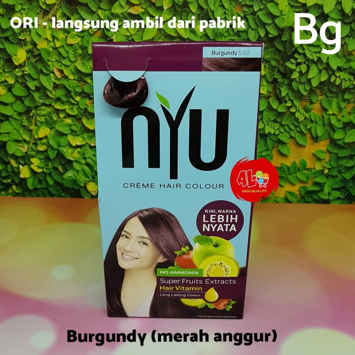 Jual Pewarna Cat Rambut Nyu Creme Hair Colour Burgundy Merah Anggur Jakarta Utara Angela Lee Tokopedia