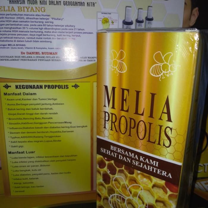 Kegunaan propolis Untuk diabetes