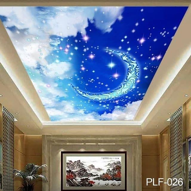 Unduh 44 Koleksi Wallpaper 3d Untuk Plafon Gratis Terbaru