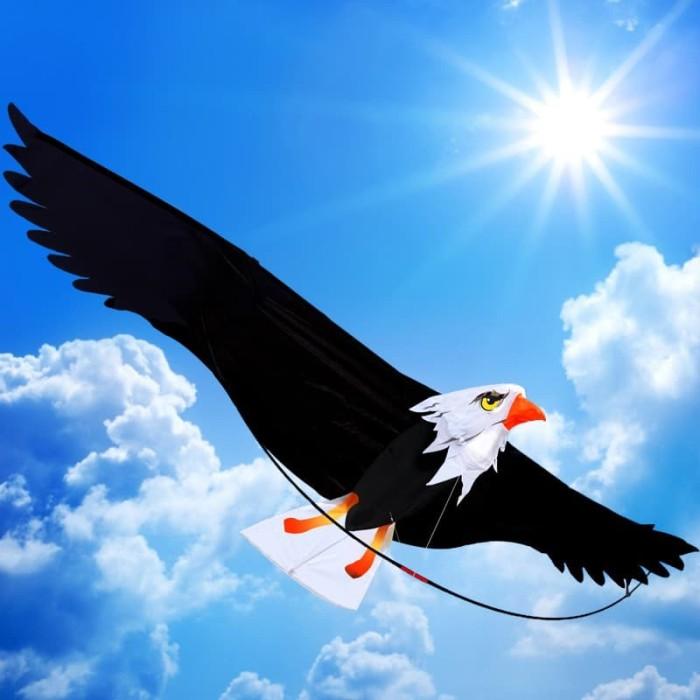 740+ Gambar Burung Elang 3d HD Terbaru