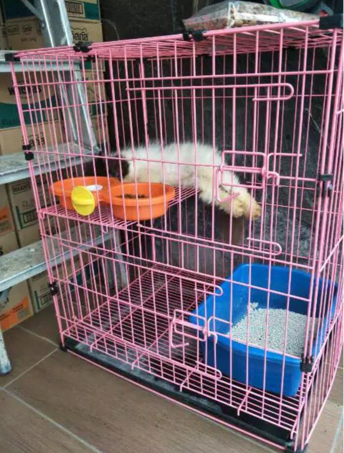 Jual Kandang Kucing Tingkat Murah Tebal Berkualitas Kota Tasikmalaya For Happy Pets Tokopedia