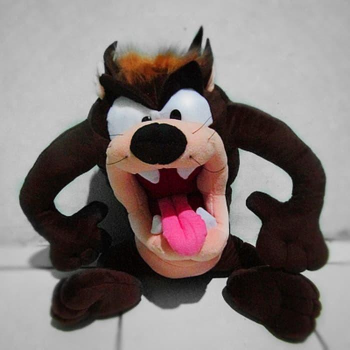 ... harga Boneka tazmania. uk. xl (50cm) Tokopedia.com 72a293ac95