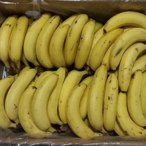 harga Paling murah buah pisang sunpride sunfresh manis 14kg pasti murah Tokopedia.com