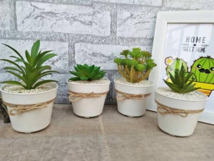 Jual Set Bunga Plastik Kaktus Mini Dengan Pot Plastik Diskon Dki Jakarta Rehan Shop44 Tokopedia