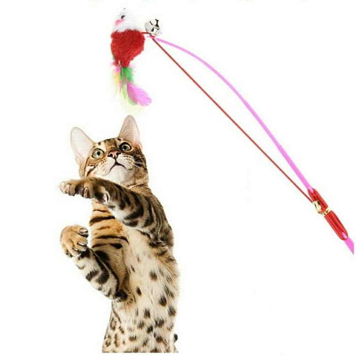 harga Mainan kucing kitten cat toys mainan bulu penggoda kucing Tokopedia.com