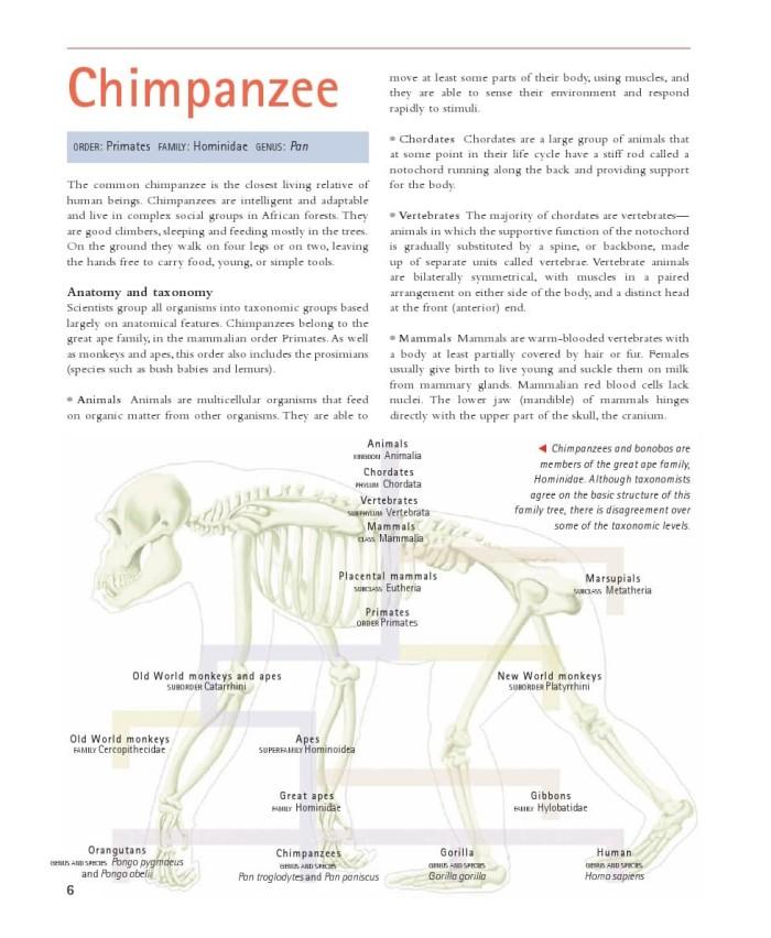 720 Koleksi Gambar Anatomi Hewan Mamalia Gratis Terbaru