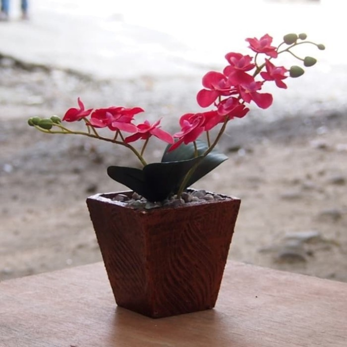 Jual Bunga Anggrek Pot Kayu Kota Bogor Alkaran Shop Tokopedia