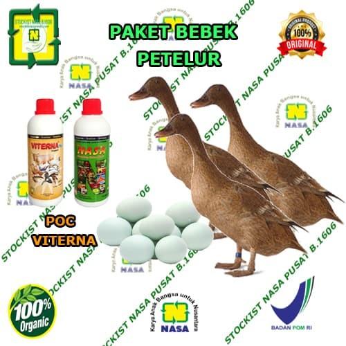 Jual Paket Vitamin Ternak Bebek Petelur Organik Nasa Jakarta