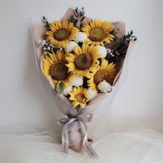 100+ Gambar Rangkaian Bunga Matahari HD