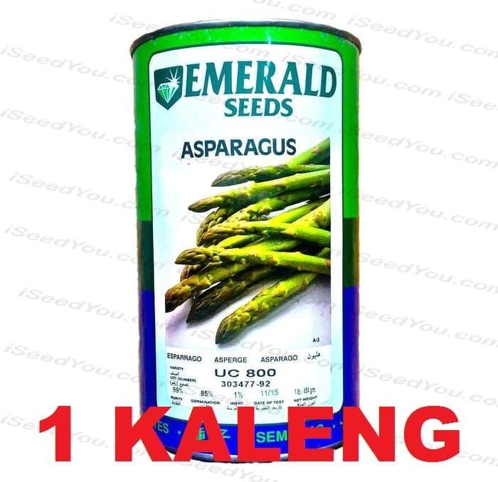 Foto Produk 1 Kaleng Biji Benih Eceran Asparagus F1 varietas UC800 dari Biji Benih