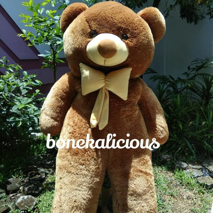 ... harga Boneka beruang teddy bear raksasa super besar jumbo 2 meter 2m  200cm Tokopedia.com 01d655141f