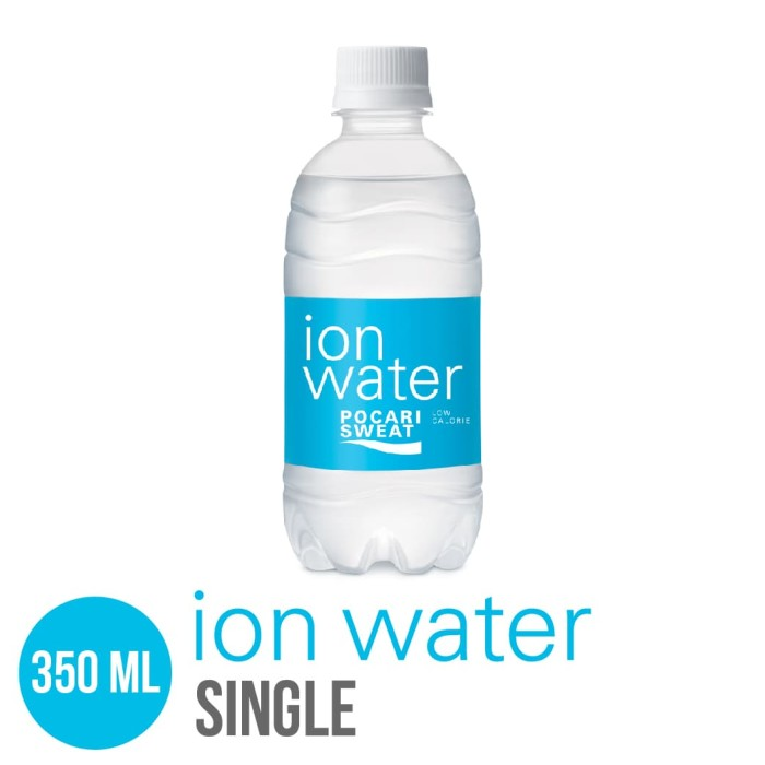 Foto Produk ION WATER pet 350 ml Single dari Toko Otsuka