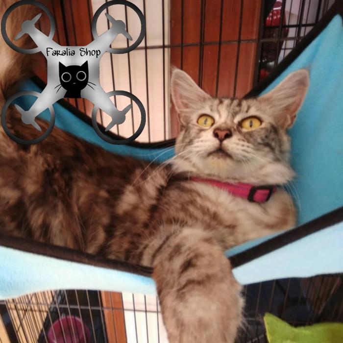 Hammock Kucing Ayunan Kasur Buaian Tempat Tidur Puppy Musang Pet Hewan - Kuning Kunyit