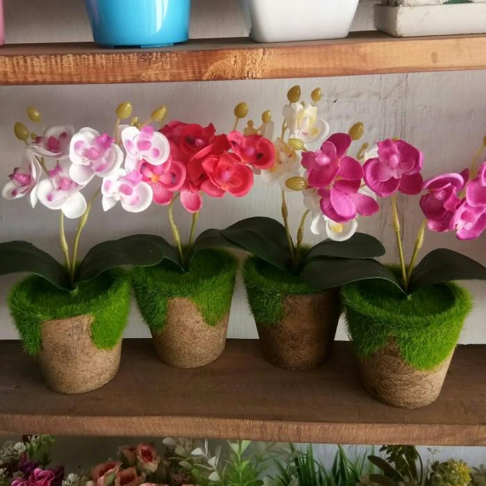 harga Bunga anggrek pot lumut palsu / tanaman artificial / dekorasi plastik Tokopedia.com