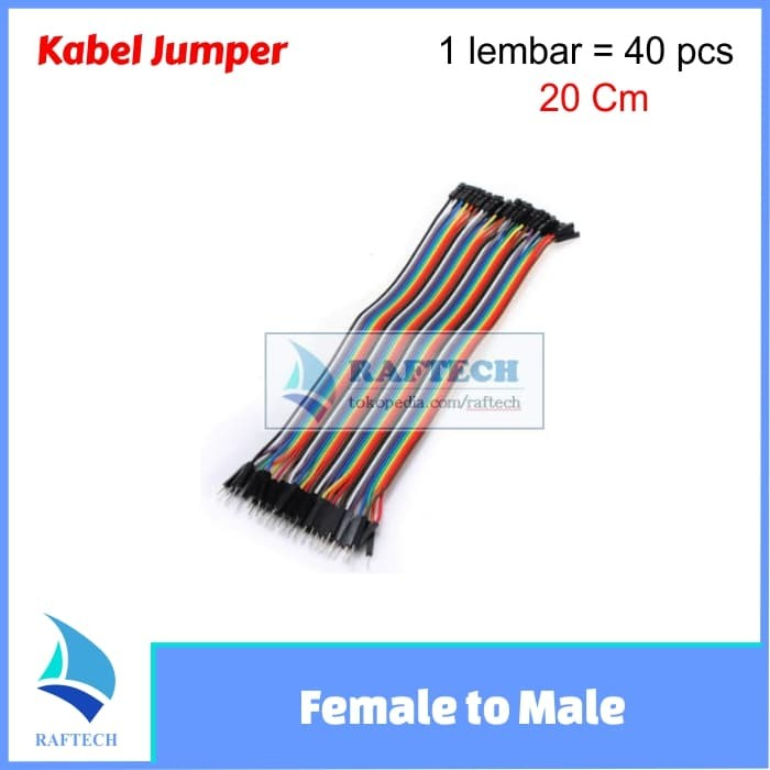 Foto Produk Kabel jumper arduino Dupont 20 cm Female to Male Pelangi 1 lembar dari RAFTECH