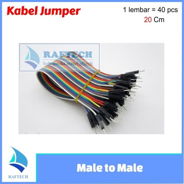 Foto Produk Kabel jumper Dupont 20 cm Male to Male pelangi 1 lembar dari RAFTECH