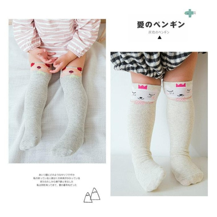Foto Produk BB-A kaos kaki anak TF TZ TP long socks baby and kids import dari aisyahstoree