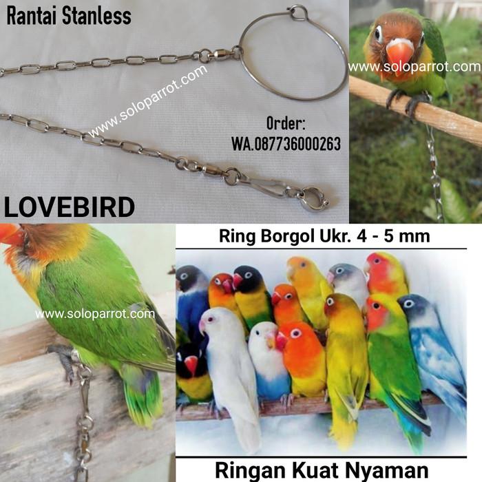harga Rantai lovebird Tokopedia.com