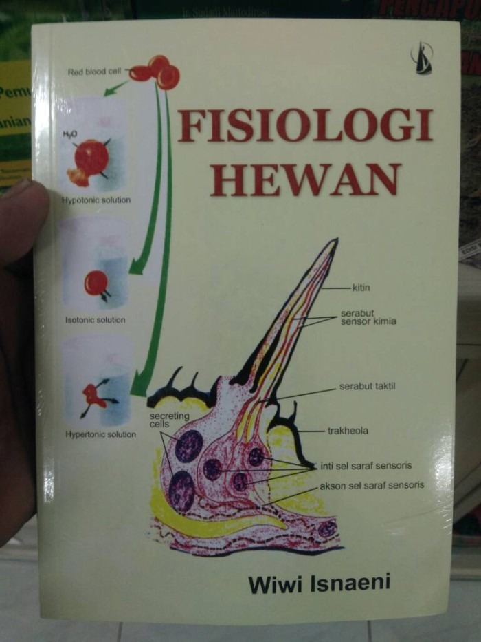 harga Buku biologi-fisiologi hewan - wiwi isnaeni Tokopedia.com