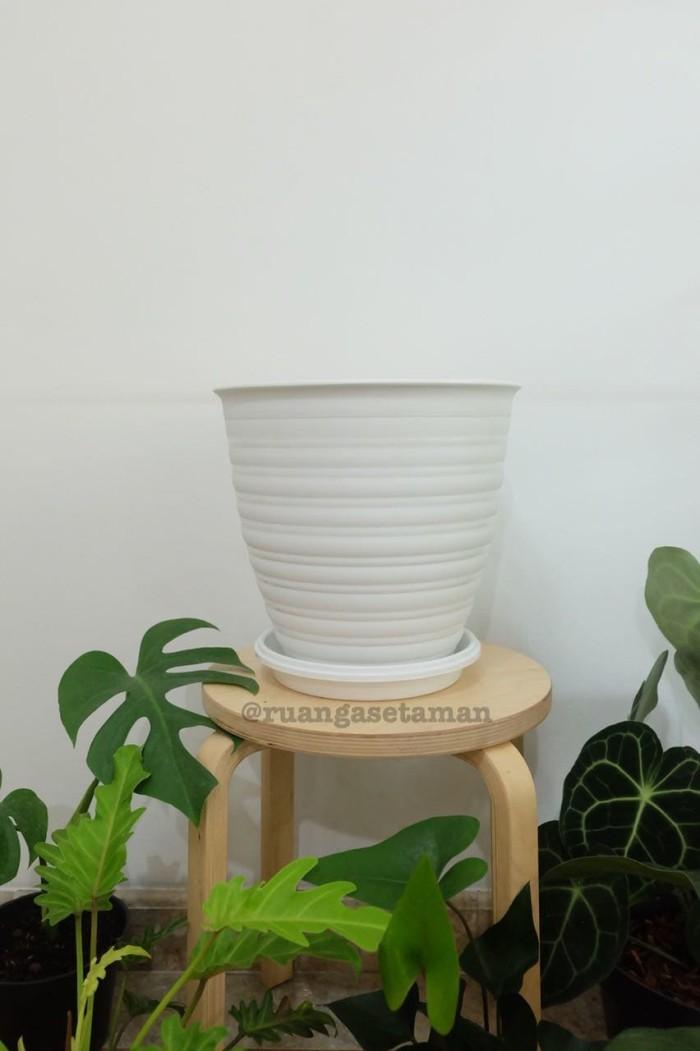 harga Pot bunga & tanaman hias tawon putih 30 (pirus) Tokopedia.com