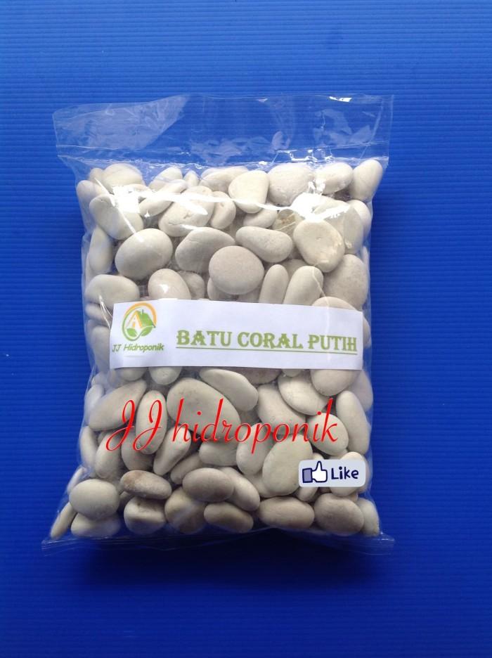 harga Batu coral/koral putih untuk hiasan tanaman dan taman ( 2.000 gram) Tokopedia.com
