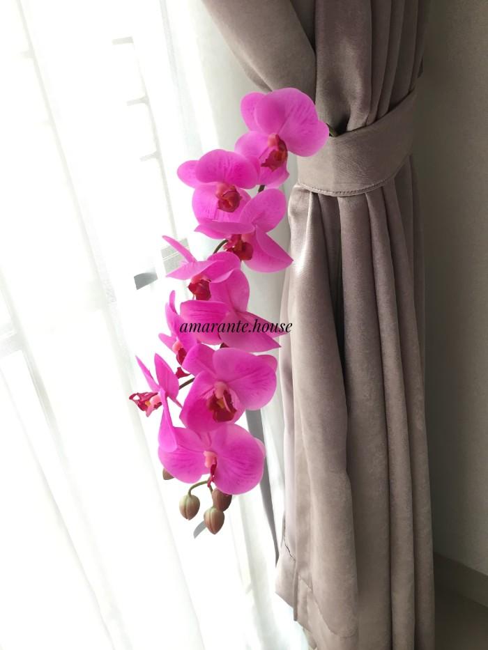 Jual bunga anggrek latex cek harga di PriceArea.com ff847d7fab