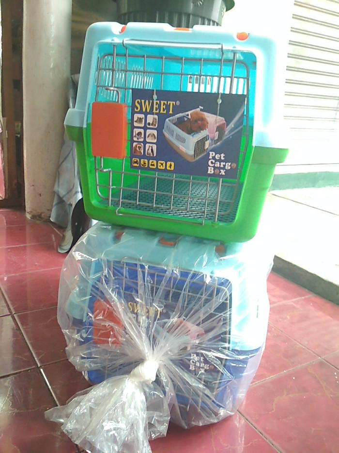 harga Pet cargo sweet Tokopedia.com