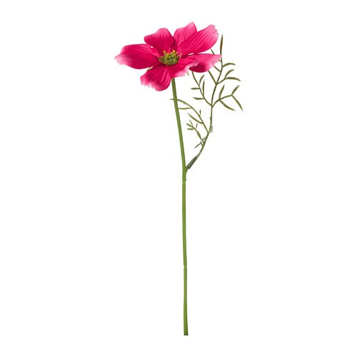 Jual IKEA SMYCKA Artificial Flower Cosmos   Bunga Palsu 24 cm ... 6495a84c78