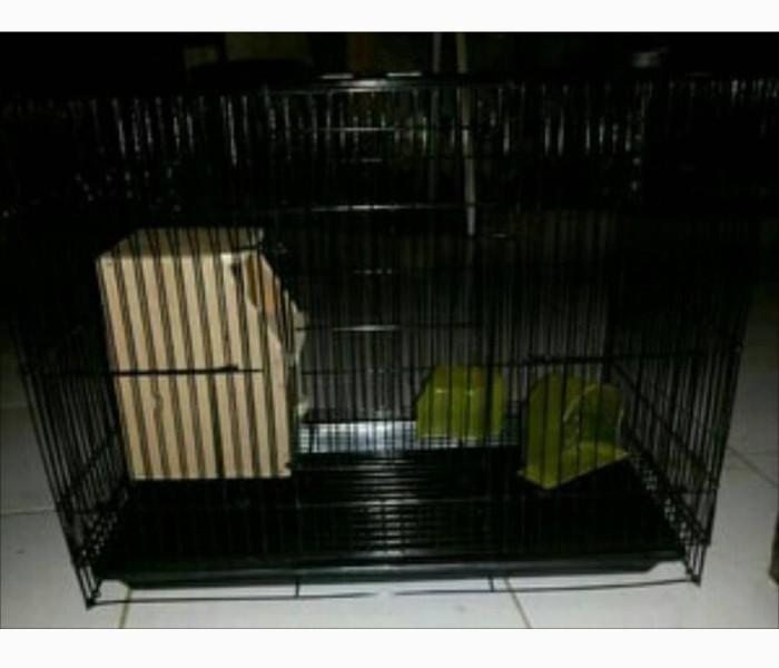 harga Kandang kucing kelinci burung hamster landak size m Tokopedia.com