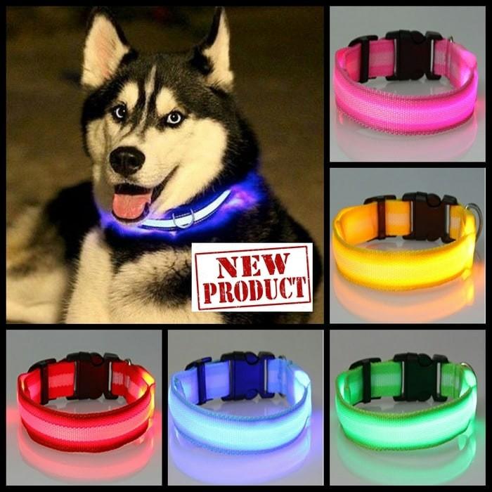 kalung anjing kucing LED tali pet collar lampu menyala aksesoris hewan
