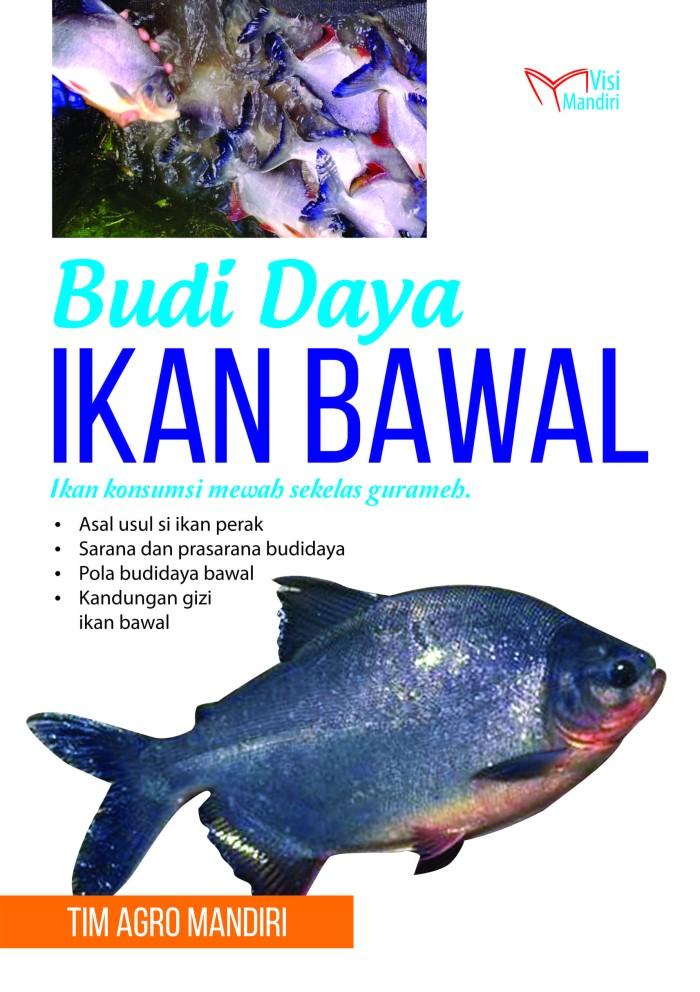 Budidaya Ikan Bawal Putih Infoakuakultur Com