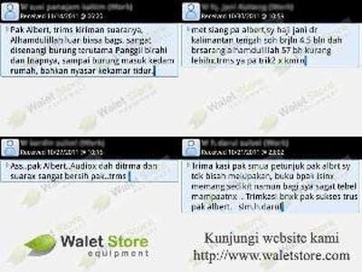 Foto Produk Paket Suara Walet 4 Memory Card   dari samalona online store