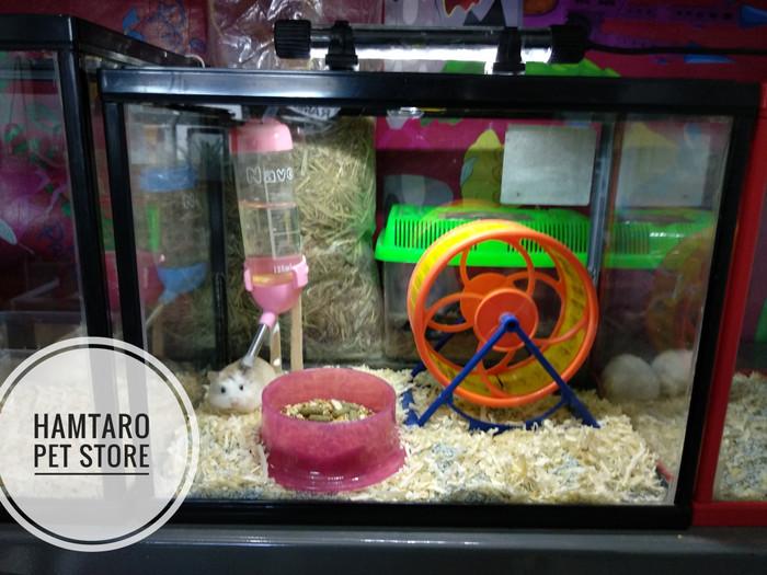 harga Kandang hamster terarium lucu paket kumplit Tokopedia.com