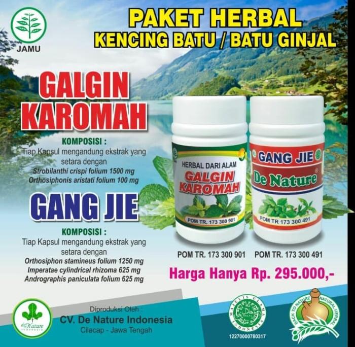Foto Produk Obat Batu Ginjal dari Herbal Denature Centre