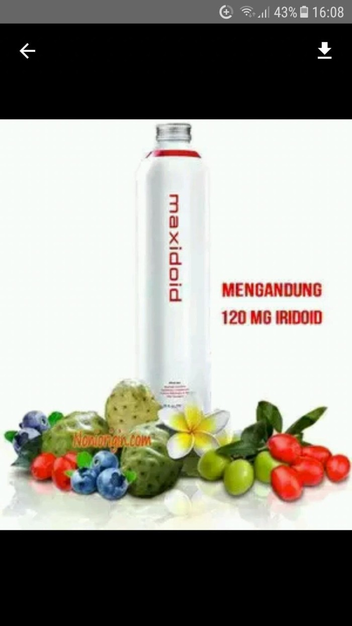 Jual Noni Tahitian Maxidoid Original Per Botol Store Sintas 1