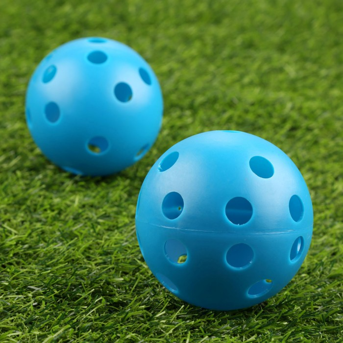 harga Floorball ball bola unihockey unihoki blue - murah Tokopedia.com
