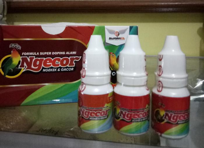 harga Ngecor vitamin konslet untuk burung love bird dari bahan alami alami Tokopedia.com