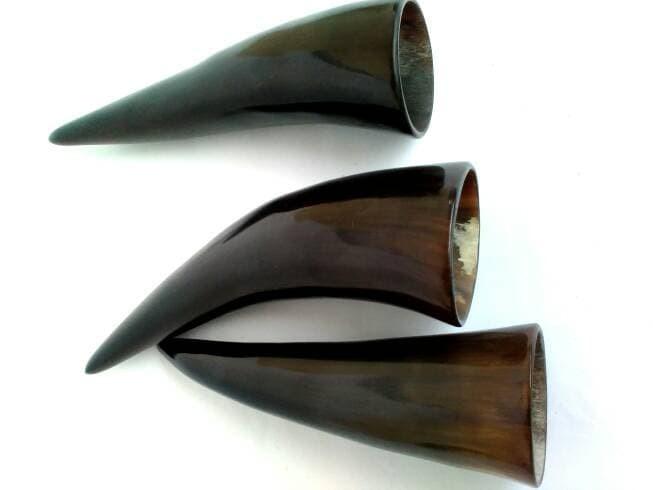 Image result for tanduk yang di gunakan untuk bekam