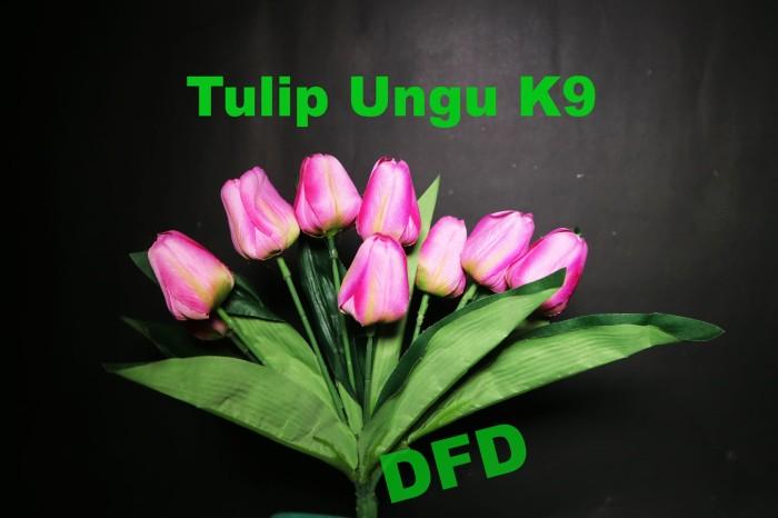 Download 44 Koleksi Wallpaper Bunga Tulip Bergerak HD Paling Keren