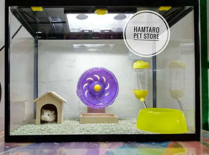 Jual Aquarium Hamster Cek Harga Di Pricearea Com