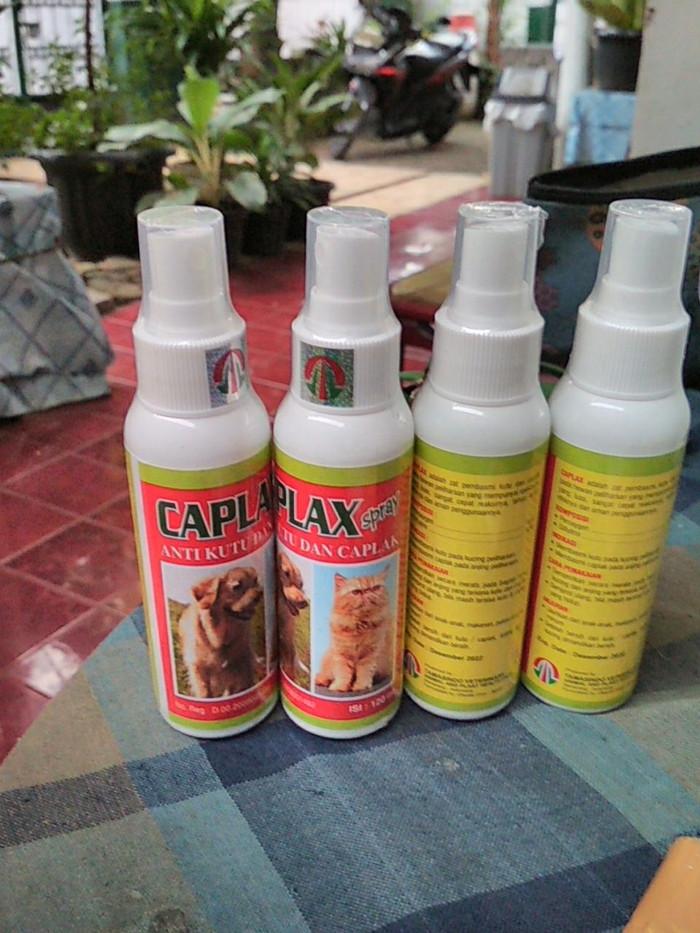harga Caplax obat scabies spray Tokopedia.com