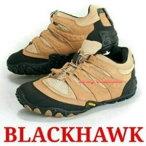 Blackhawk cats