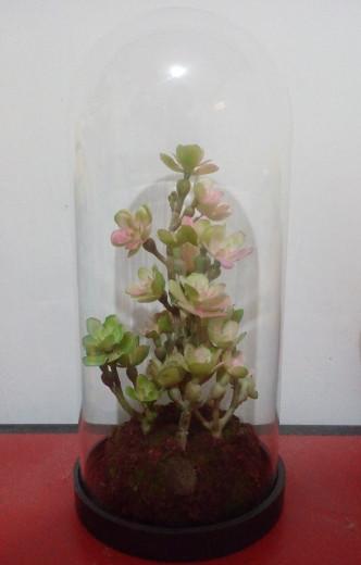 harga Pajangan bunga imitasi - artificial flower in glass Tokopedia.com