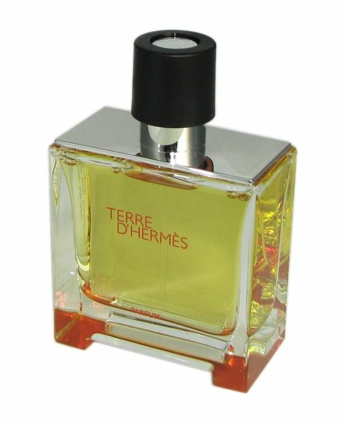 Katalog Parfum Pria Terre D Hargano.com ...