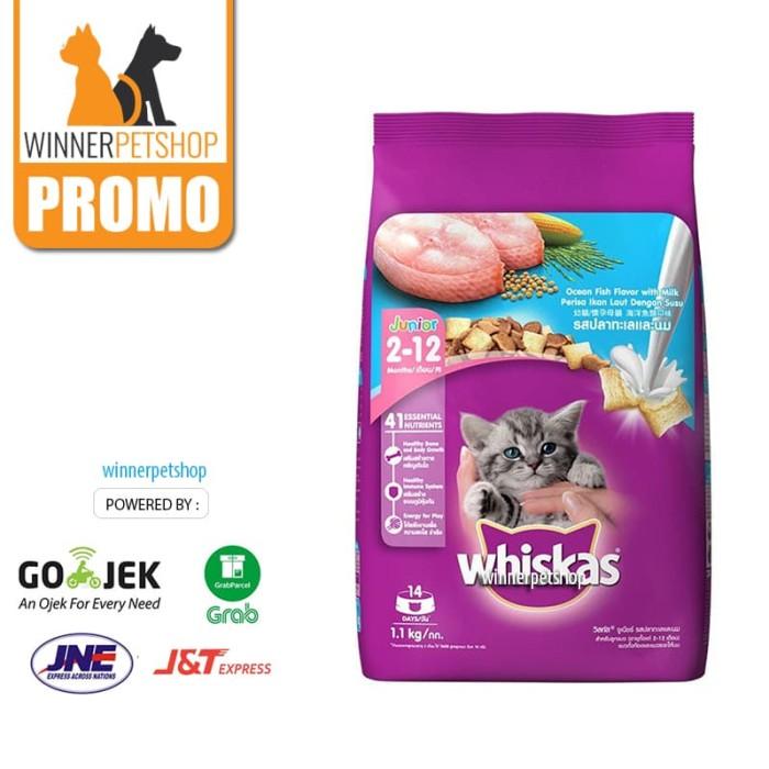 ... harga Whiskas junior 1.1 kg - makanan anak kucing - kitten - makanan kering Tokopedia.