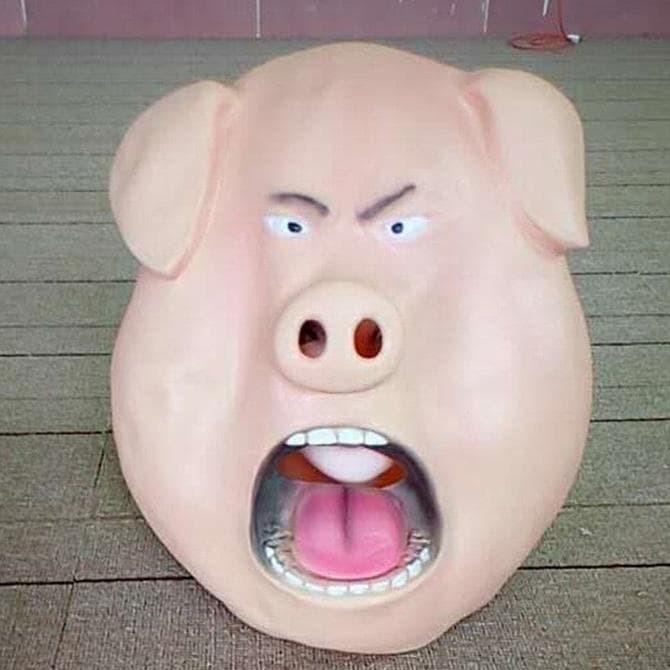 55+ Gambar Babi Marah Terlihat Keren